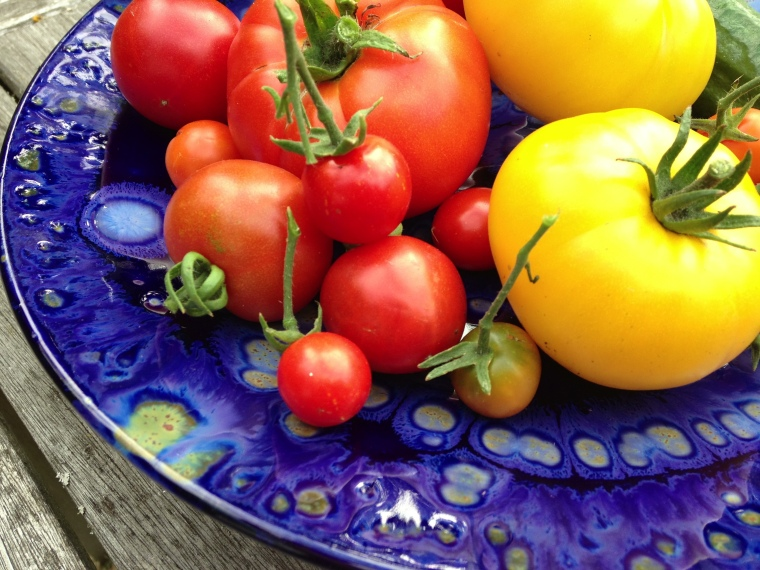 Beaumont Pottery and tomatoes 2014