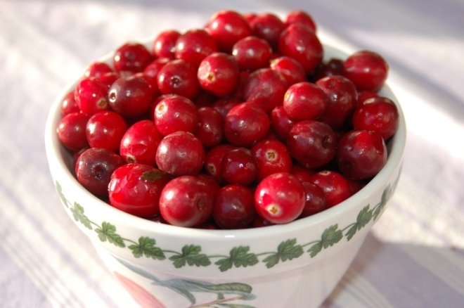 cranberries, testing cranberries for freshness
